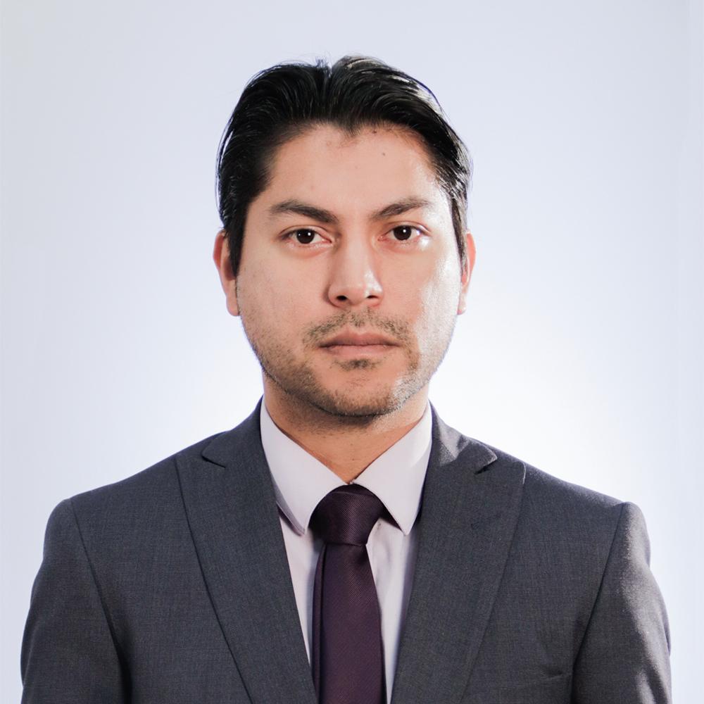 CARLOS MANUEL TORRES YÁÑEZ